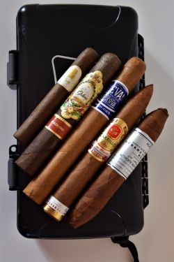 Dominican New World Cigar Sampler with Xikar 5ct Travel Humidor